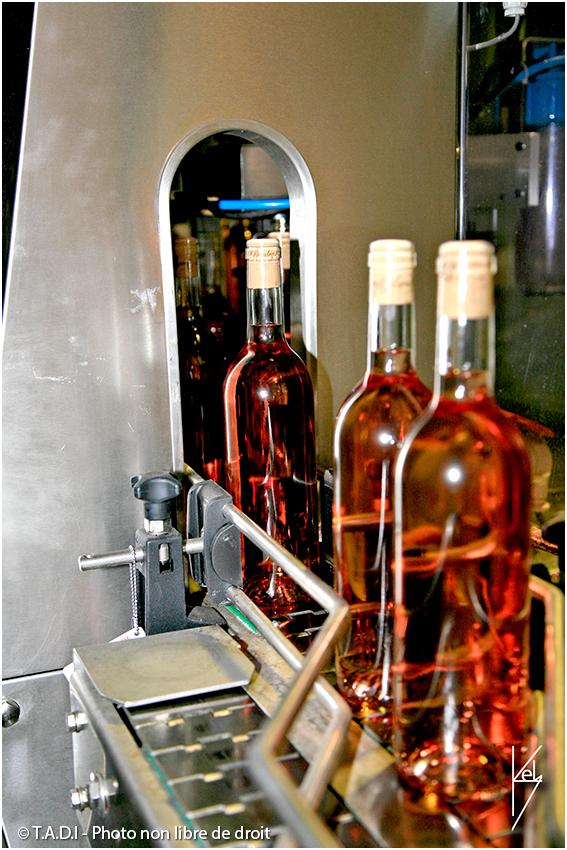 reportage photo domaine viticole var